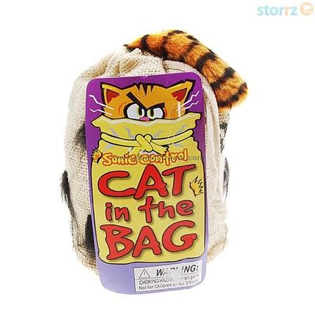 แมวอยู่ในกระเป๋าดุ๊กดิ๊ก <พร้อมส่ง>