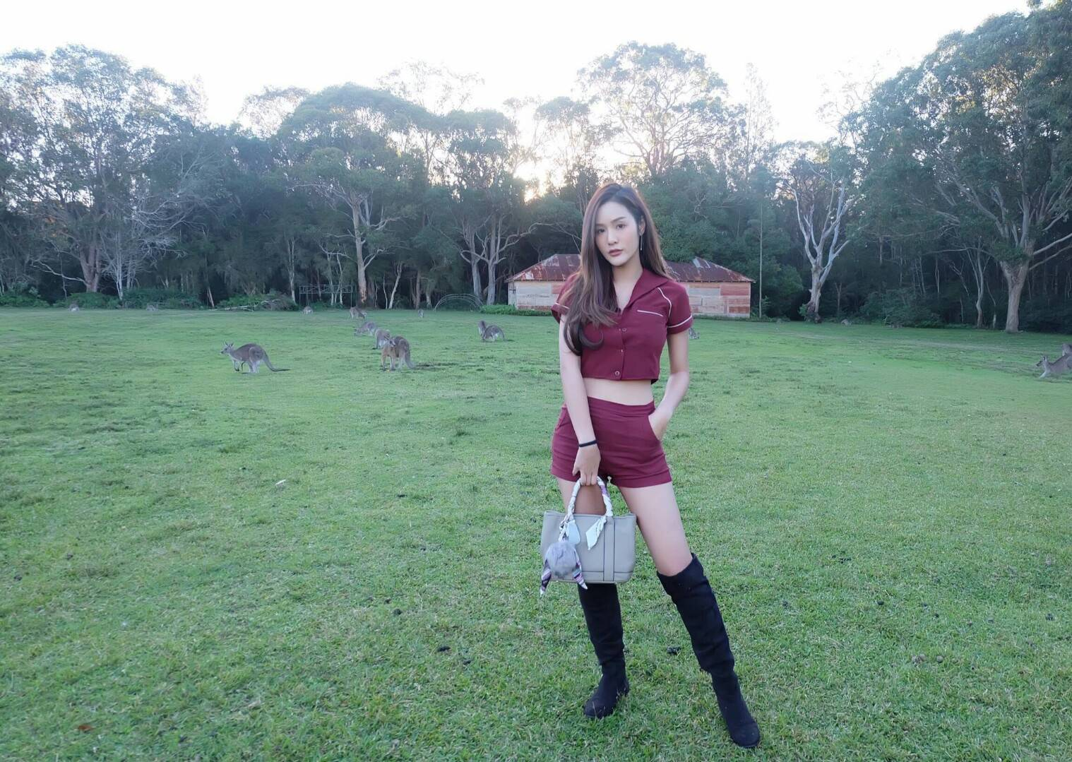 Amory Leather and croc Twilly bag