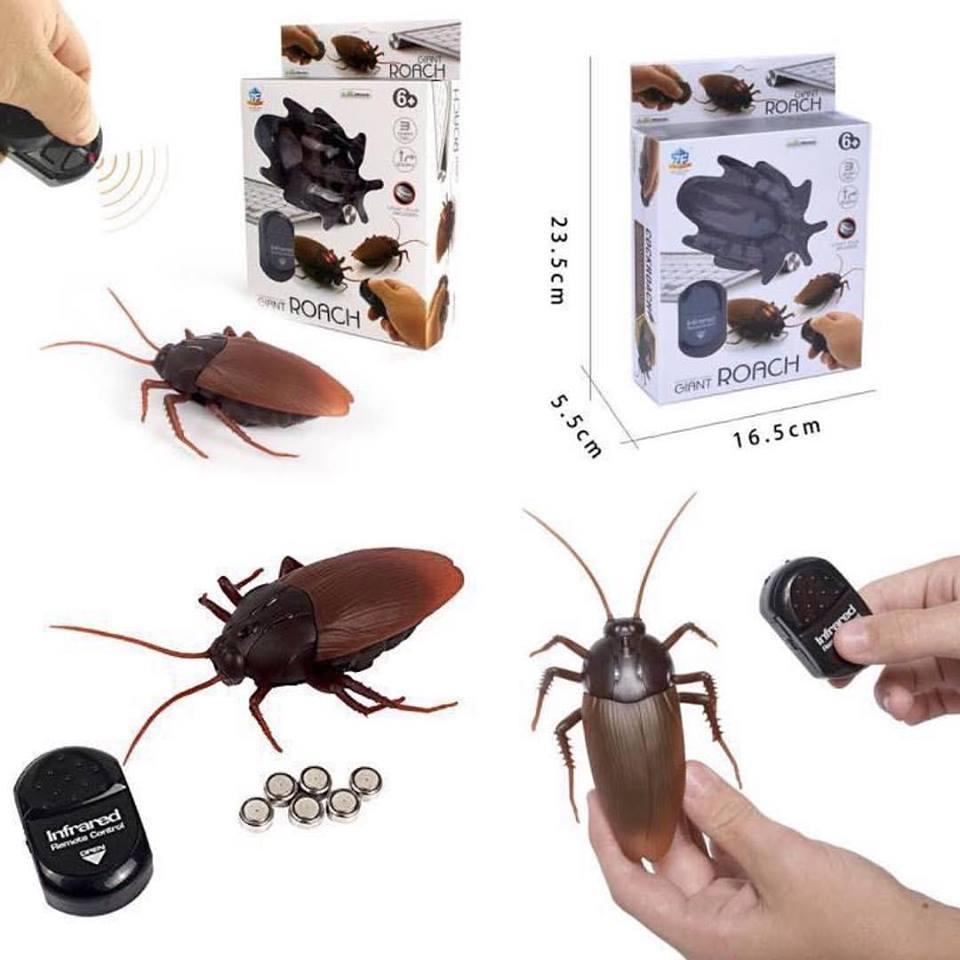 แมลงสาบบังคับ แมลงสาบบังคับวิทยุ