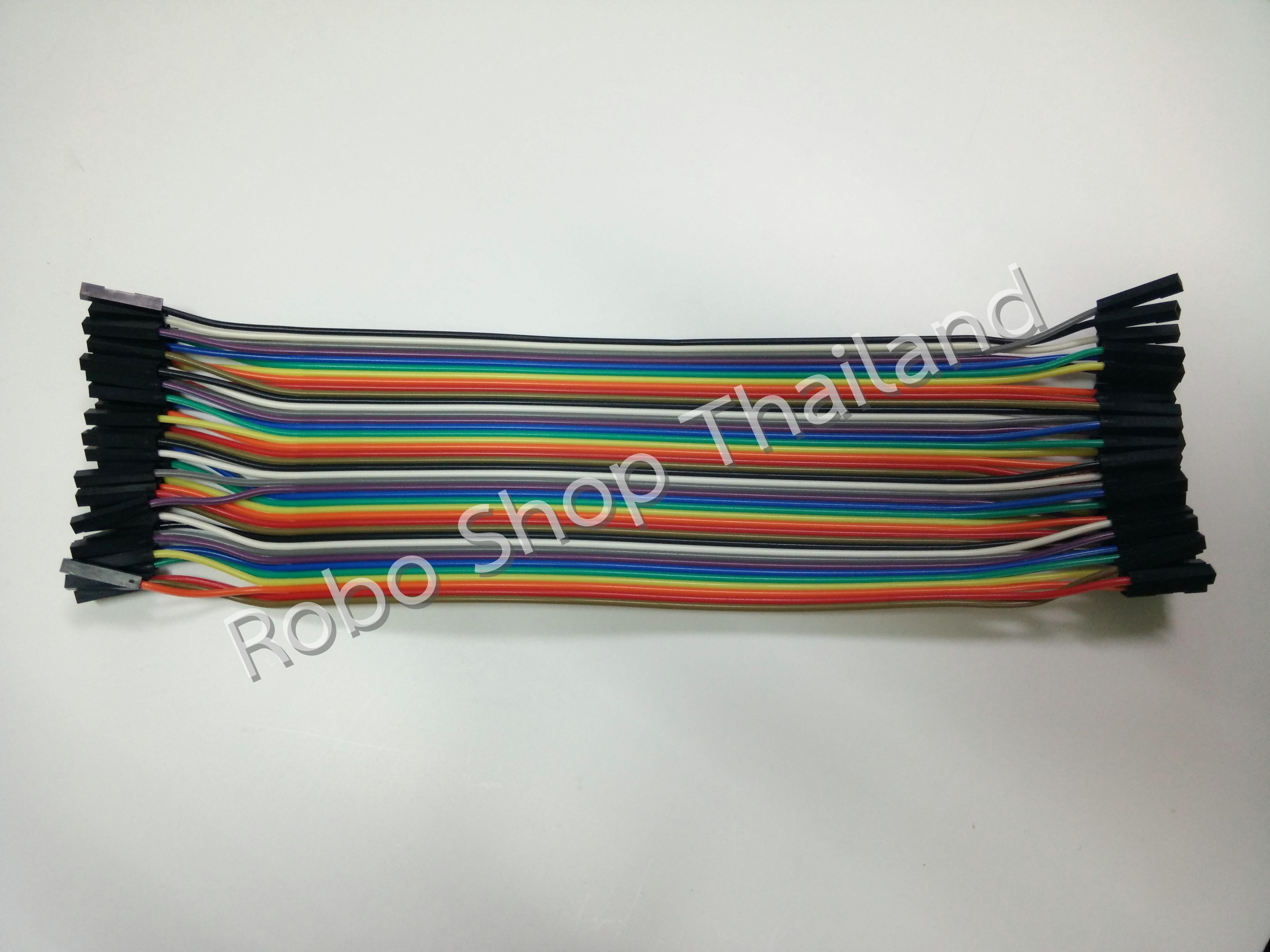 Jumper Wire Female-Female 20 cm