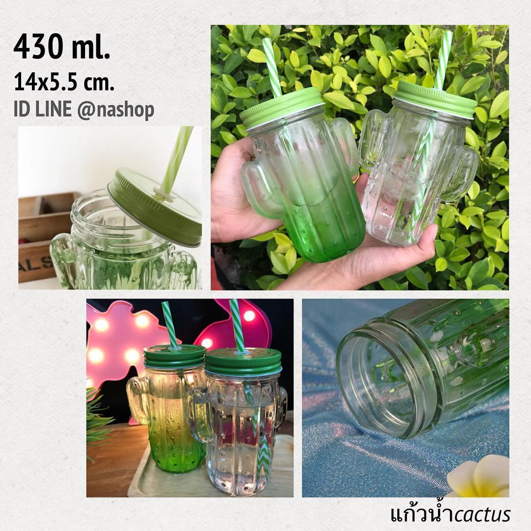 แก้วน้ำกระบองเพชร cactus พร้อมหลอด