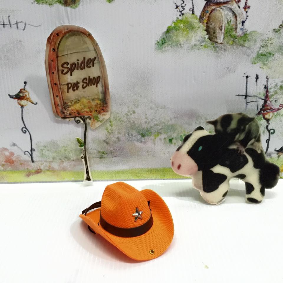 หมวกคาวบอยส์ ส้ม