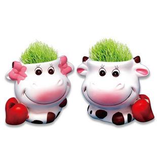 กระถางต้นไม้รูปวัว <พร้อมส่ง>