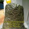 หญ้าทิมโมธี แคนาดา ไม่ร่อนฝุ่น ขนาด 3KG