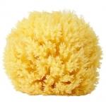 ฟองน้ำธรรมชาติแท้ 100% สำหรับอาบน้ำทารก Greek Natural Sea Sponge