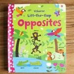 หนังสือกระดาษแข็งเปิดสนุก Lift-the-flap Opposites by Usborne เรียนรู้คำตรงข้ามภาษาอังกฤษ