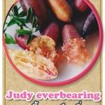 ต้นมะนาวคาเวียร์เสียบยอดสายพันธุ์ Judy Everbearing Size L
