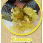 ต้นมะนาวคาเวียร์เสียบยอดสายพันธุ์ Emma Size M