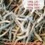 ดอกหญ้าทิมโมธี 100g thumbnail 1