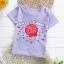 เสื้อยืดเด็กเล็ก Sweet Candy มีกระดุมข้างคอ สำหรับเด็กวัย 1-4 ปี thumbnail 1