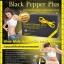 Black Pepper Plus แบล็ค เป๊บเปอร์พลัส thumbnail 9