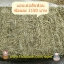 หญ้าทิมโมธี ฟาร์มแอนเดอร์สัน อเมริกา (ทิมก้านยาว) thumbnail 1