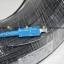สาย Fiber Optic 1Core พร้อมเข้า SC หัวท้าย ยาว 100 เมตร thumbnail 2