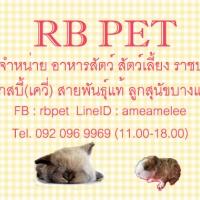 ร้านRB Pet