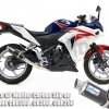 ท่อ CBR300,CB250 Honda ท่อสลิปออน Leonce GP Carbon