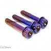 น๊อตเลสยึดท่อไอเสีย รุ้ง Blue M10 / P1.25 X 50mm 3ตัว