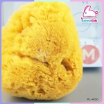 ฟองน้ำธรรมชาติ pureen Fine Silk ไซส์ M