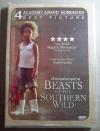(DVD) Beasts of the Southern Wild (2012) ฮีโร่น้อยฝ่ามรสุมชีวิต