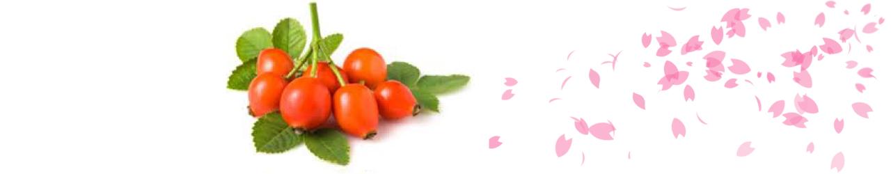 4.โรสฮิป (Rose Hip Extract) อุดมไปด้วยวิตามินซี และคอลาเจน มีฤทธิ์ในการเป็นสารแอนตี้ออกซีแดนท์ สามารถป้องกันการทำลายของเซลล์จากอนุมูลอิสระได้เป็นอย่างดี บำรุงให้ผิวขาว กระจ่างใส และช่วยเสริมให้ L-Glutathione ทำงานได้ดีขึ้นอีกด้วย